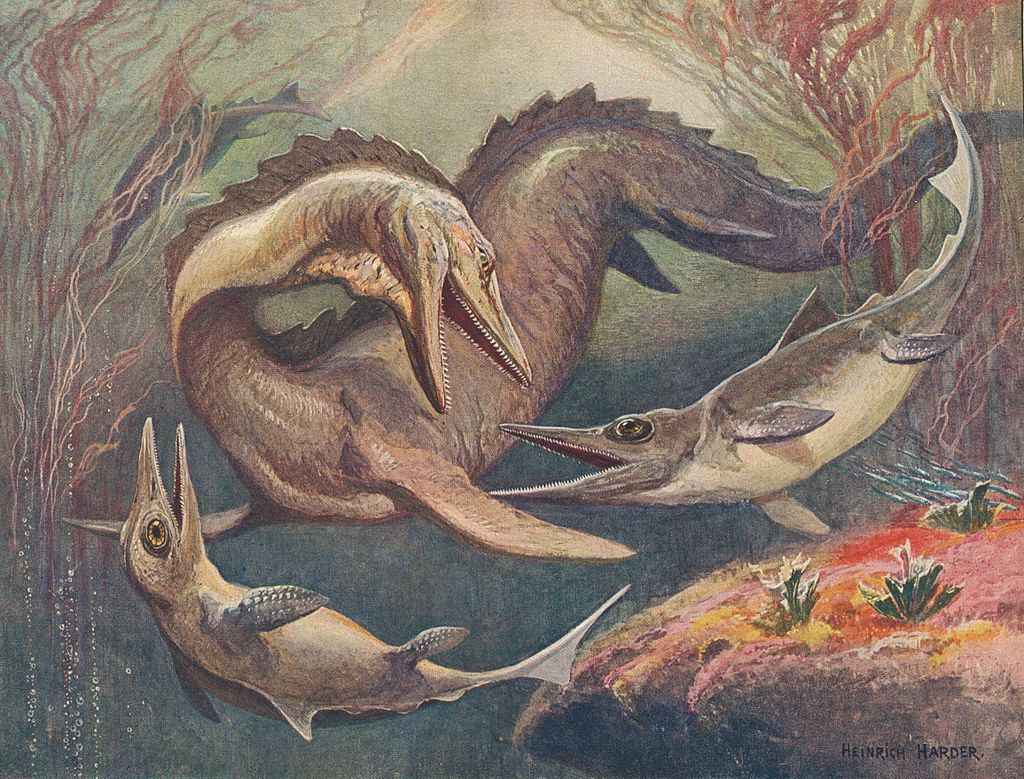 Mosasaurus_ichthyosaurus